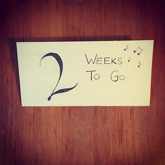 2 weeks to go until our Burns Night Ceilidh on 27th January in Stoke Newington #ceilidh #burnsnight #london #dance #folkmusic #stokenewington #tunes #trad #2weeks