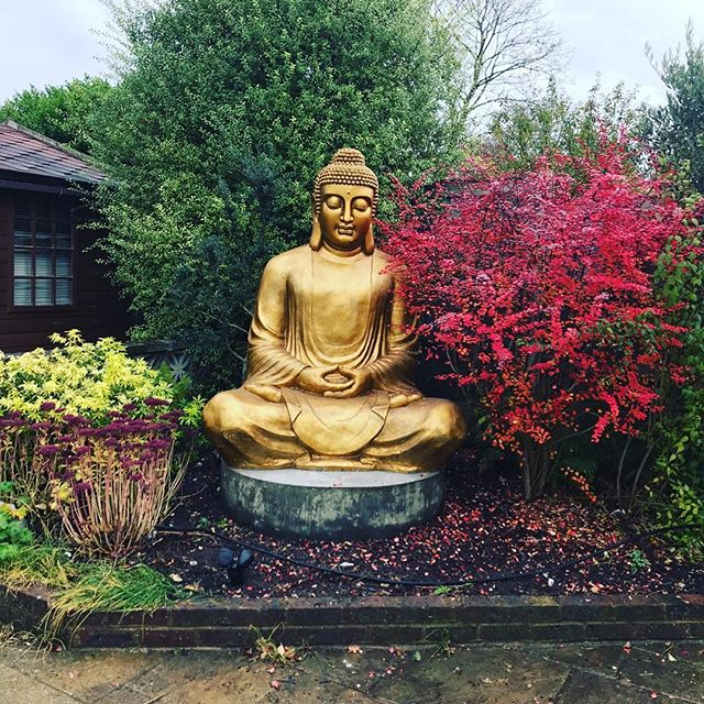 Stunning setting for our large Buddha we just delivered #garden #stunning #wow #idealhome