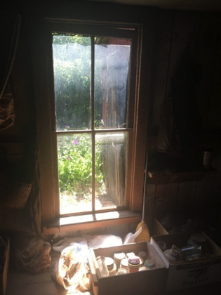 South-facing living-room window