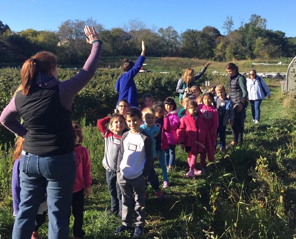 Kindergarten students visit Wright-Locke Farm