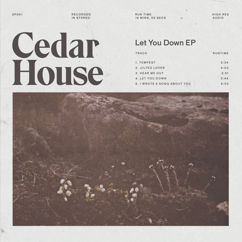 Cedar House-Let You Down