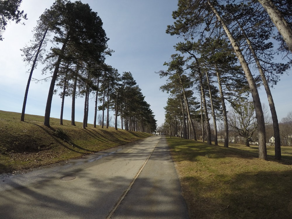 The tree-lined park entrance off from Green Hill Parkway/Lincoln Street.