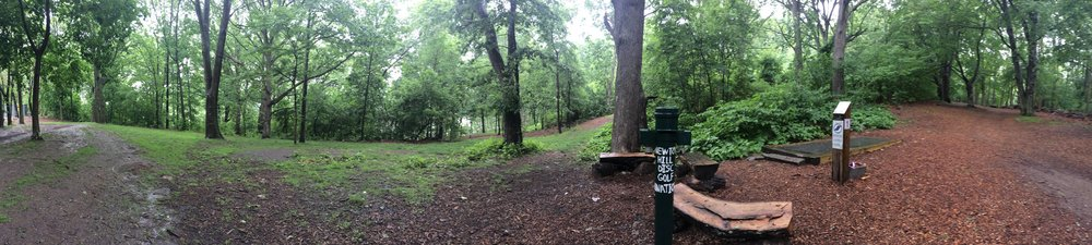 disc golf panorama.jpg