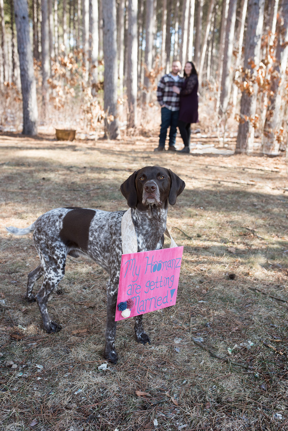 Stefanie made a sign for her pup to announce their engagement.