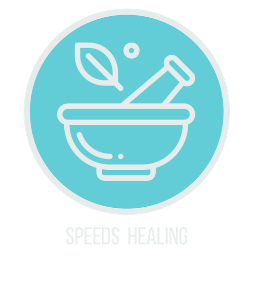 speeds healing icon.png