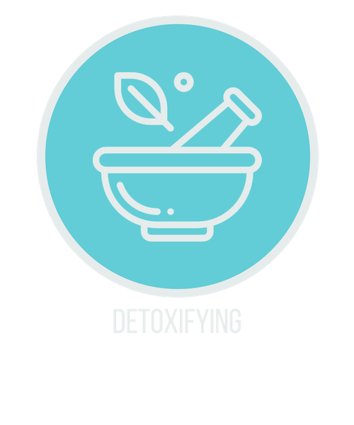 detoxifying icon.png