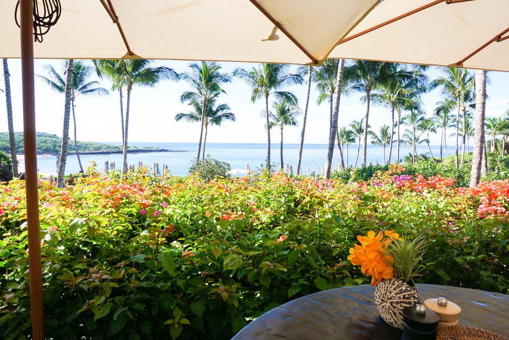 our-honeymoon-in-lanai-honeymoon-review-of-lanai6.jpg