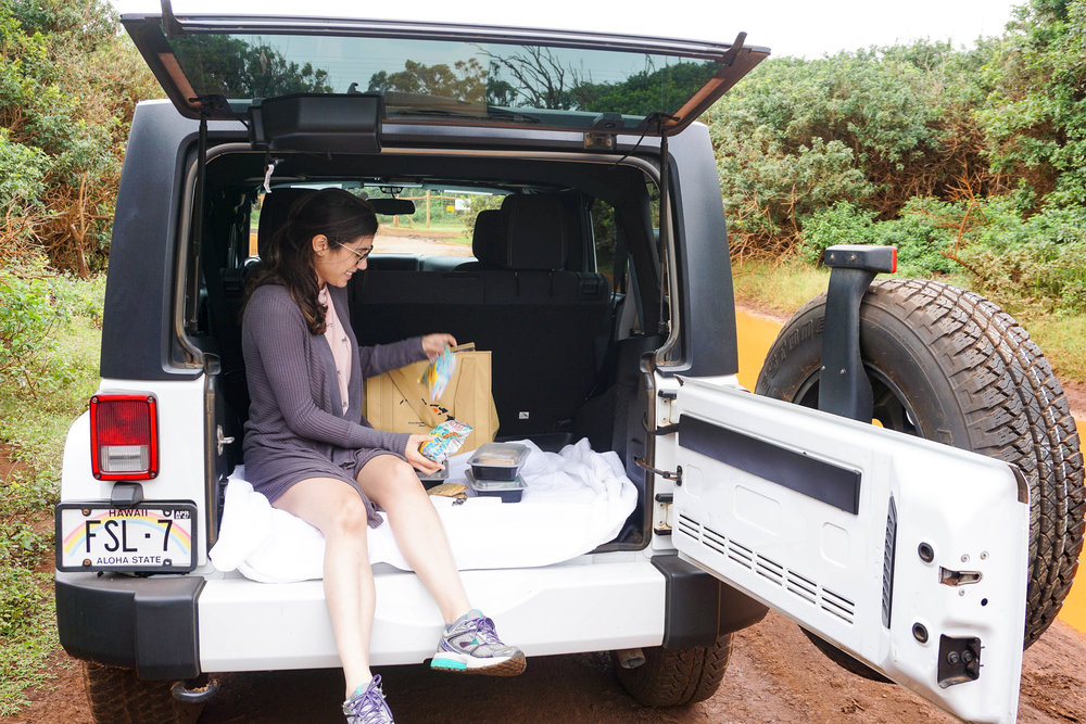 our-honeymoon-in-lanai-honeymoon-review-of-lanai24.jpg