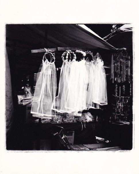 Veils ©2010 Charlotte Mann