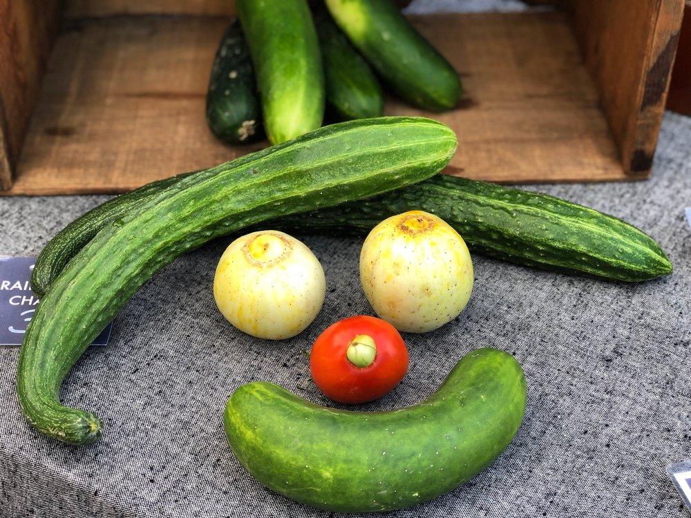 Friendly curious cucumber man!
