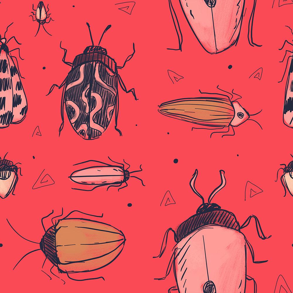 bugs_website.jpg