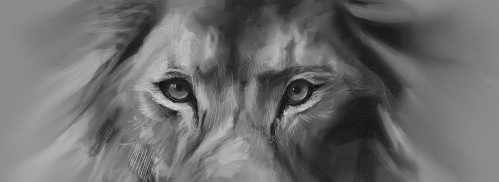 dailysketches_011_lion.jpg