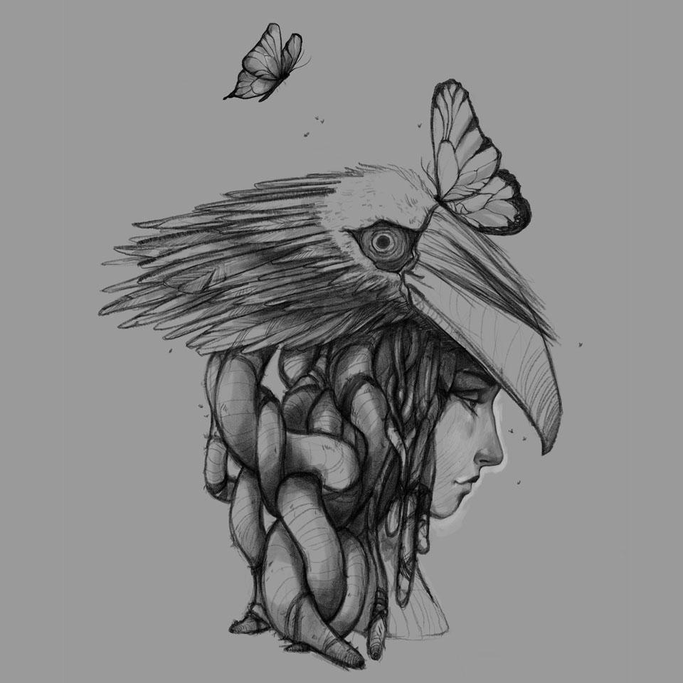 dreads_birds_breakdown_1.jpg