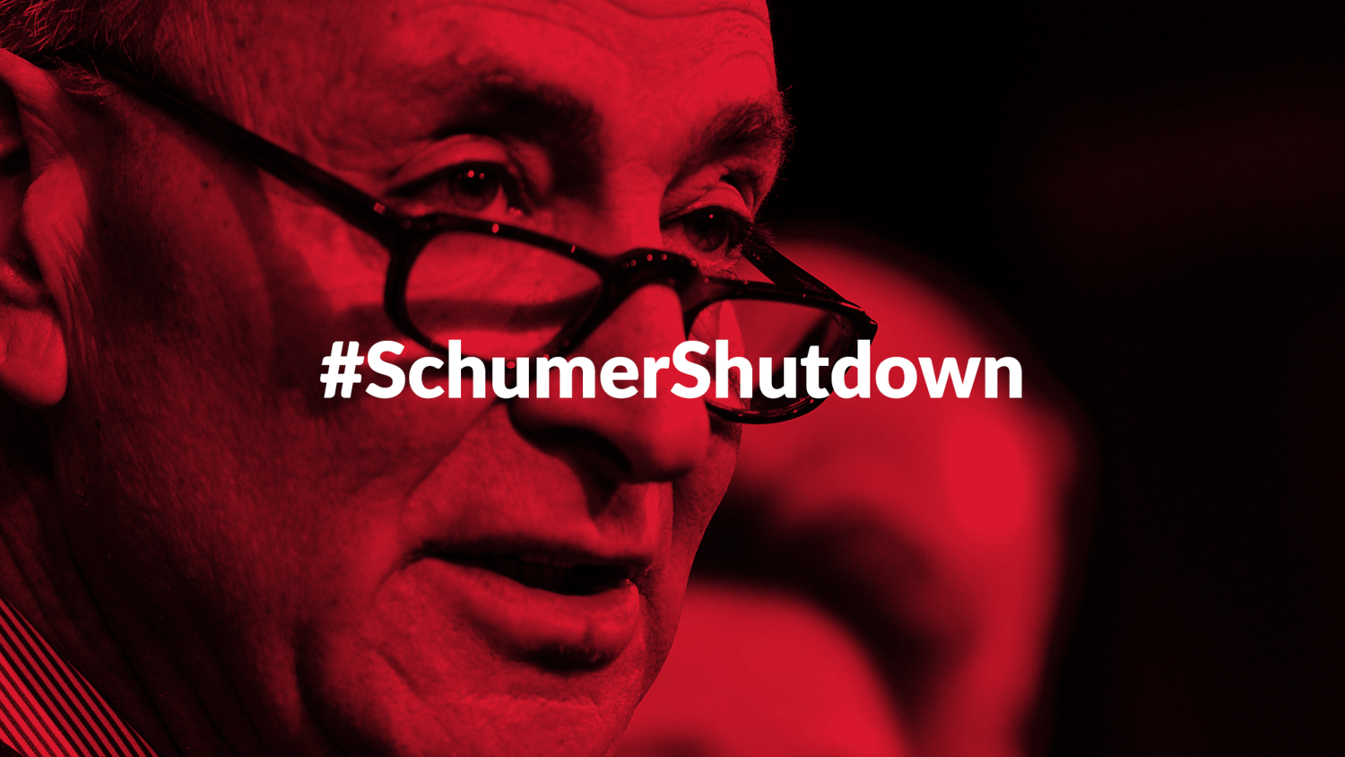 Image result for Schumer Shut Down