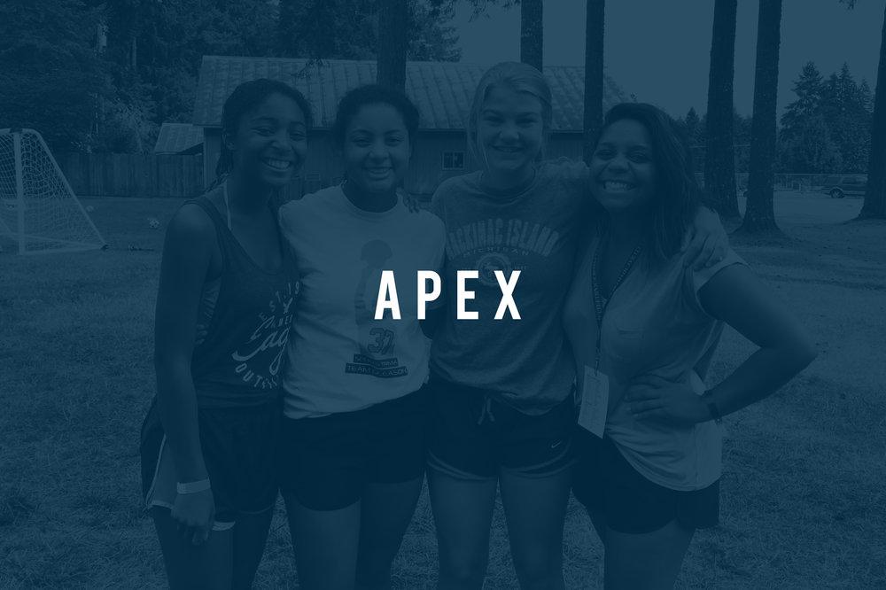 apex_cover.jpg