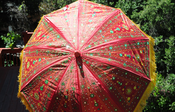 Umbrella's with Stand -