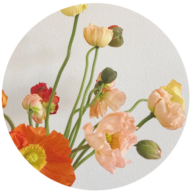 FLOWER INDEX_POPPIES.jpg