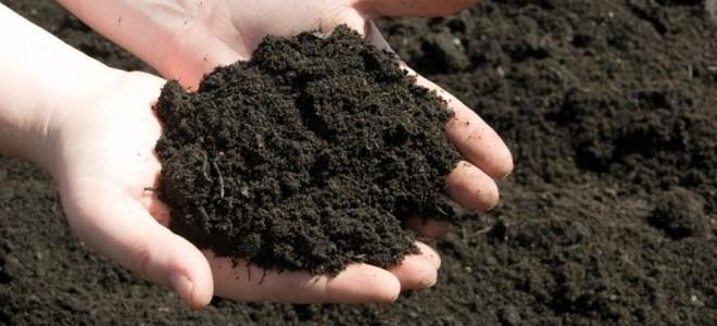 Topsoil & Compost -
