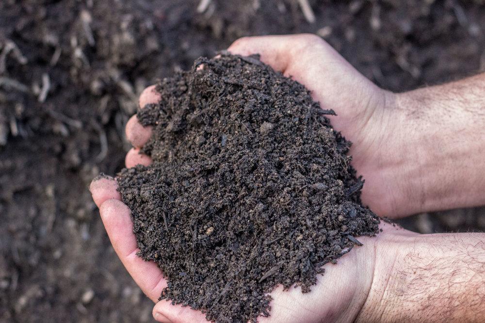 topsoil -