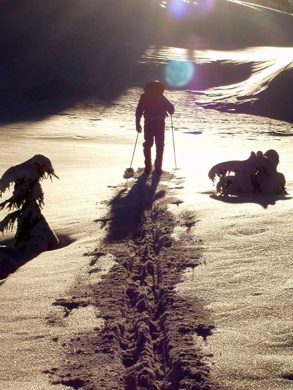 Snowy-Skier-Sunset.jpg