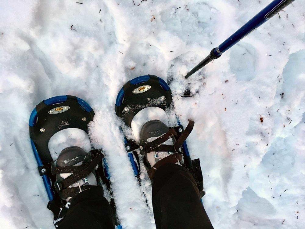 Feet-in-Snowshoes.jpg