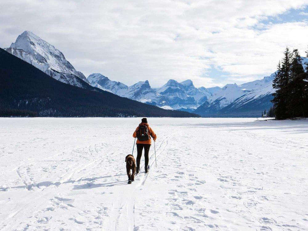 Skiing-With-Dog.jpg