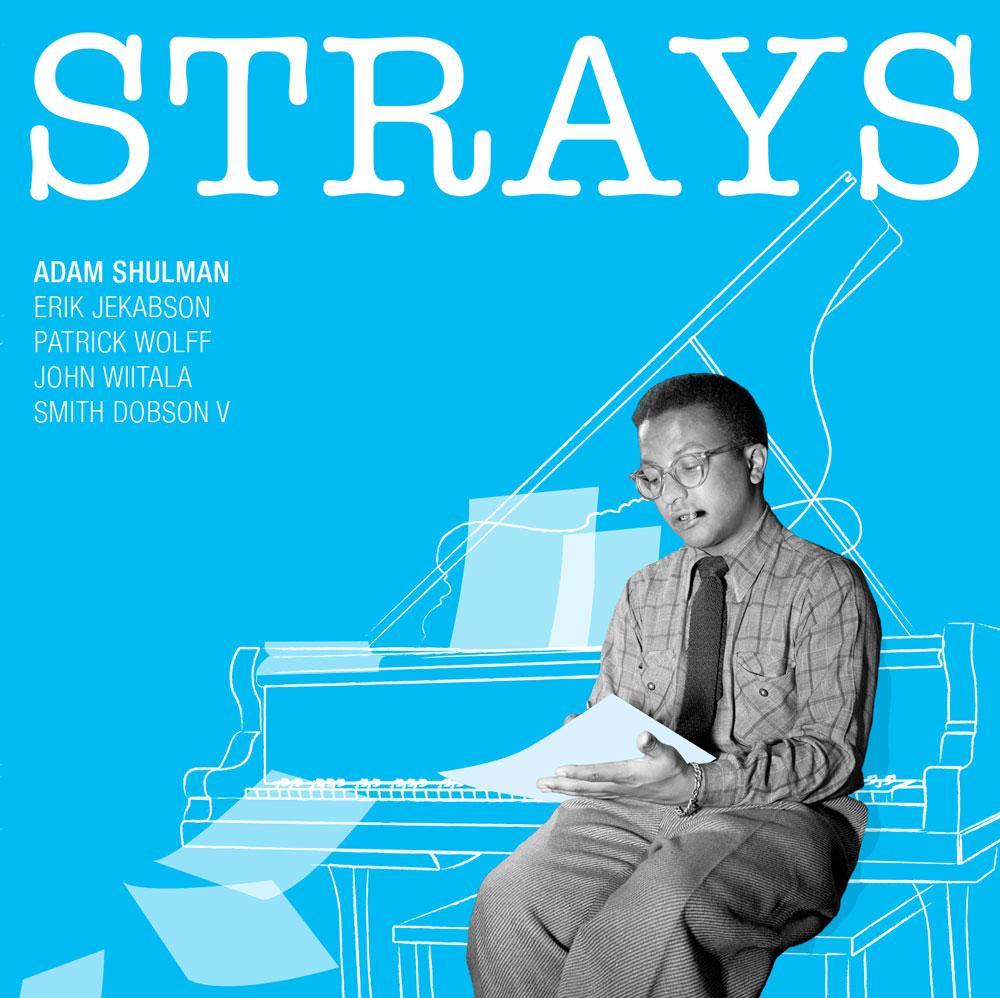 Strays_cover.jpg