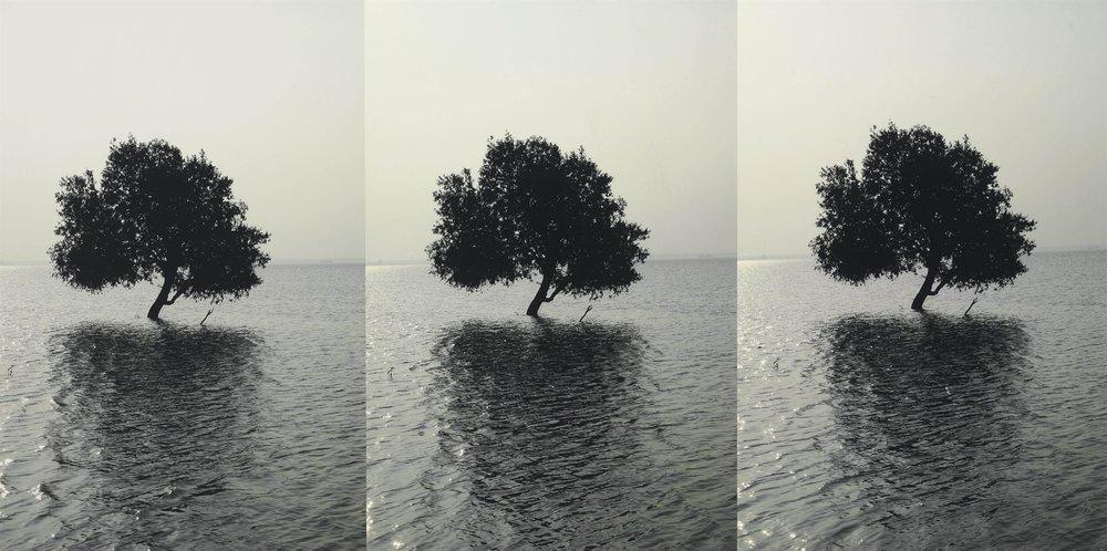Atul Bhalla,  Alone and Again , 2007