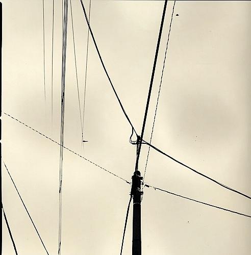 Lines and Birds #12 [Sketchbook Series, Aerial], 2001