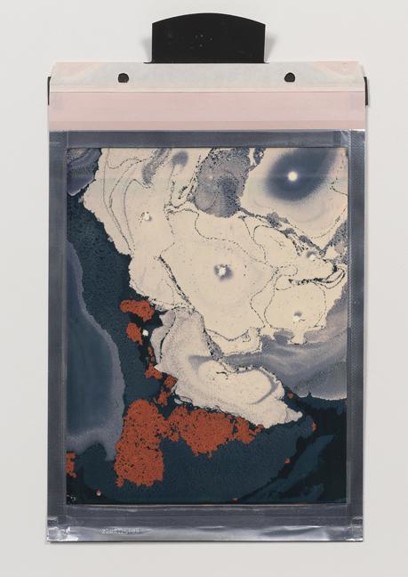 Beatrice Pediconi,  Gaea #1 , 2018. Polaroid, Unique, 8 x 10 in.