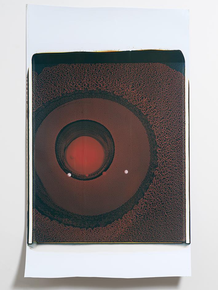 Beatrice Pediconi,  Gaea #29 , 2018. Polaroid, Unique, 20 x 24 in.
