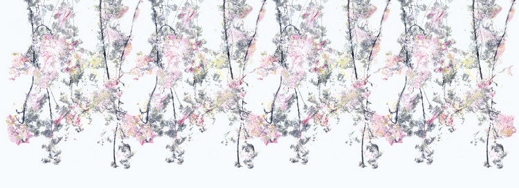 sakura20_mid+res_pattern3.jpg