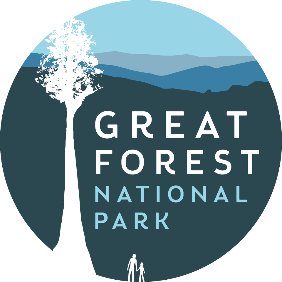 Great Forest National Park   The Great Forests National Park proposal is a vision for a multi-tiered parks system for bush users and bush lovers alike.