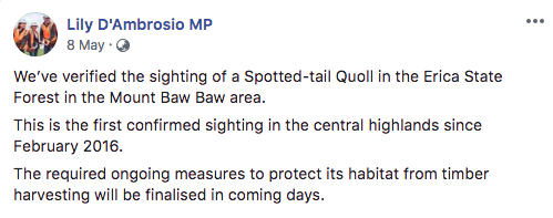 Above: Minister D'Ambrosio announces on Facebook that quoll habitat will be protected from timber harvesting.