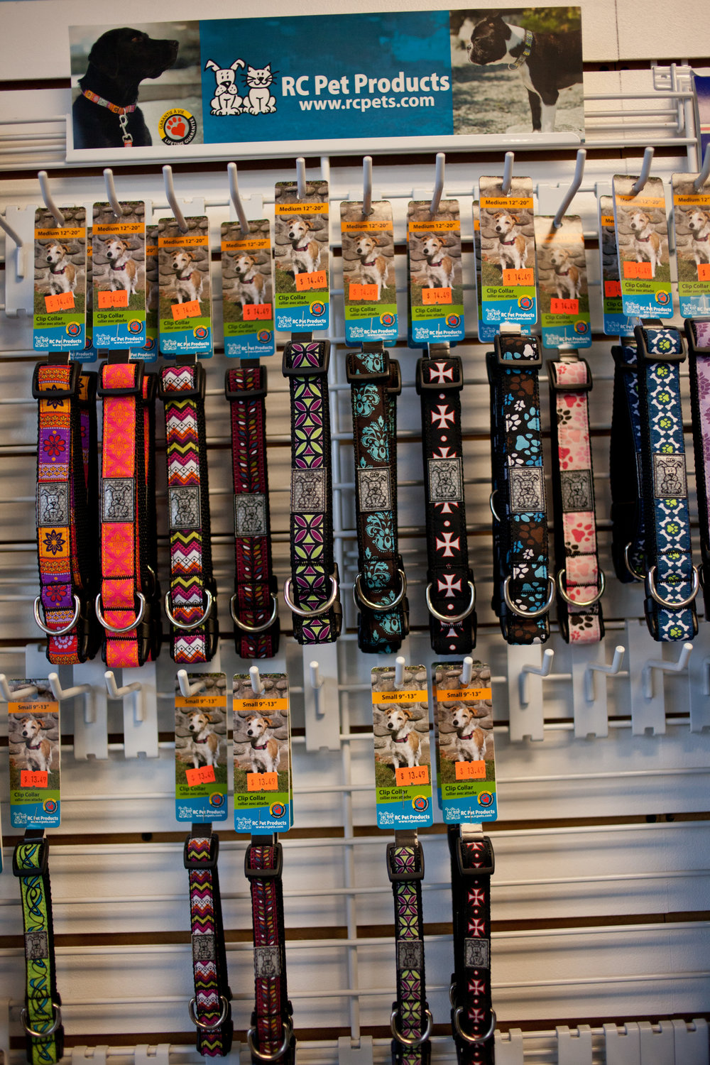 RC Leashes and Collars