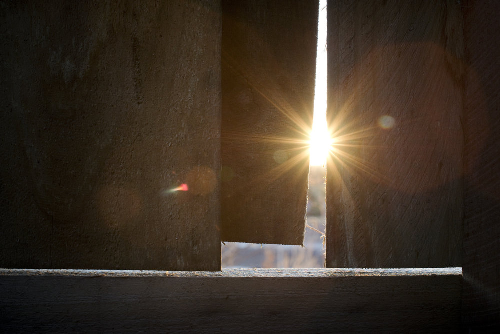 light through fence.jpg