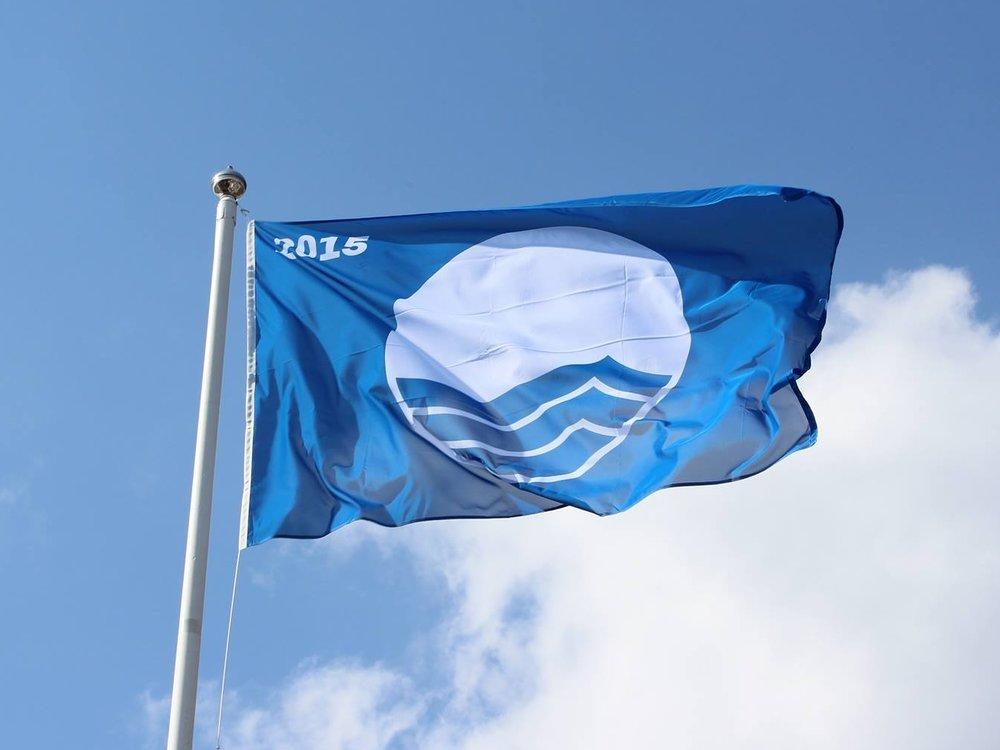 Blåflagg.jpg