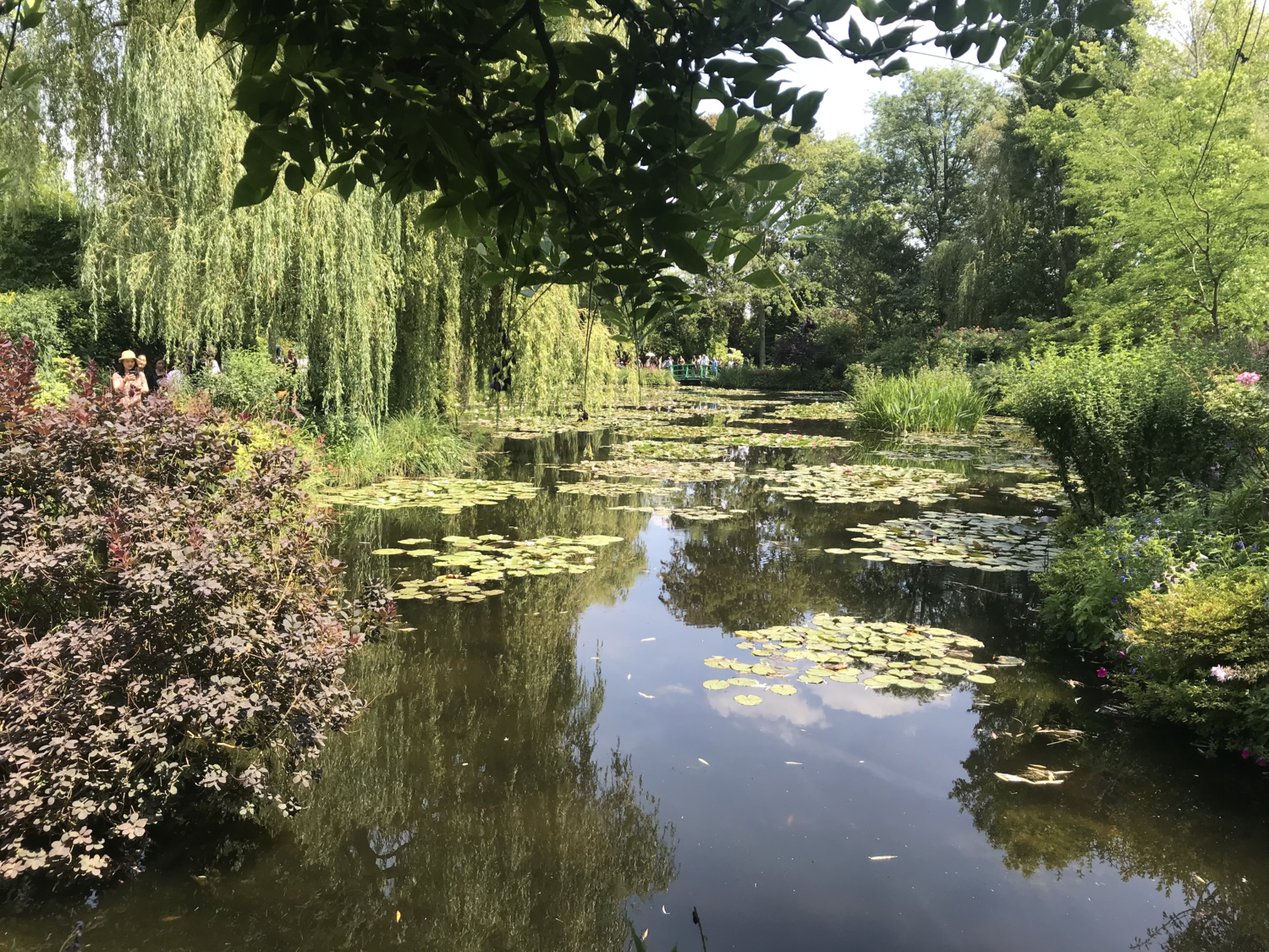 Monet's water lilies in Giverny, France. © AMV, July 2018.