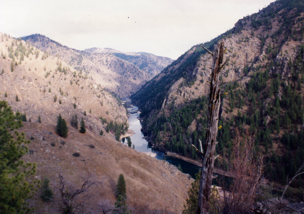 Salmon River canyon above Carrey Creek.jpg