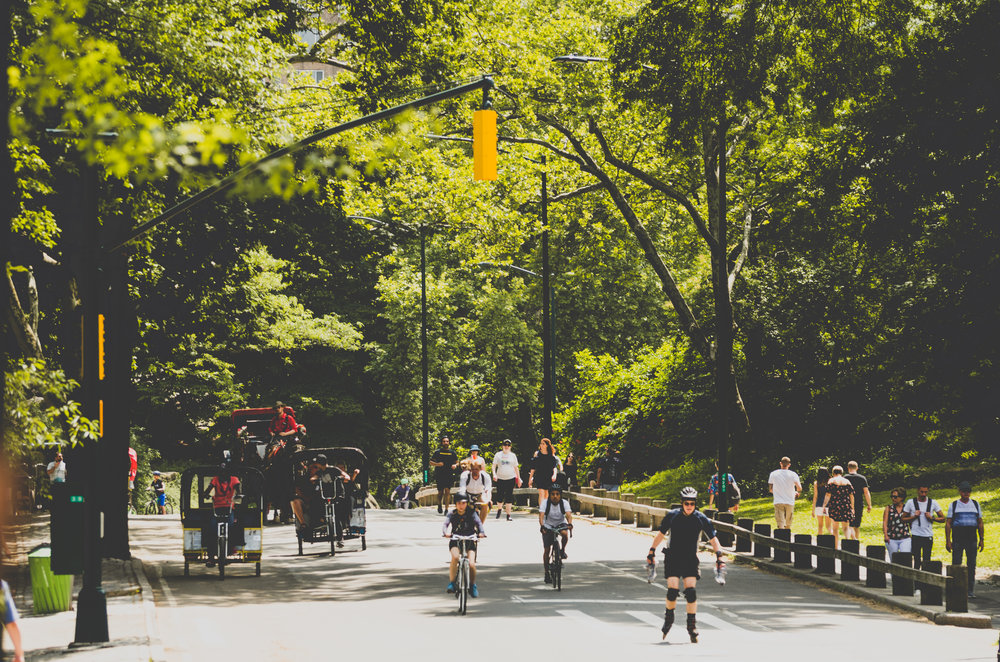 central-park-recreational-new-york-city.jpg