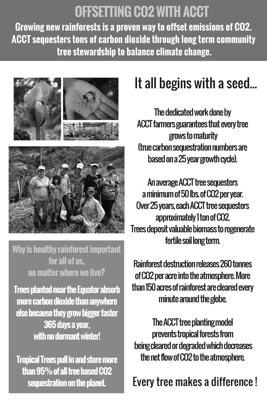 ACCT Brochure english-3.jpg