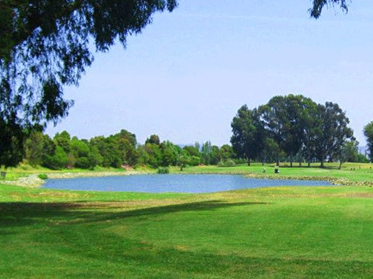 Playday at Alameda - April 15Golf Course Website