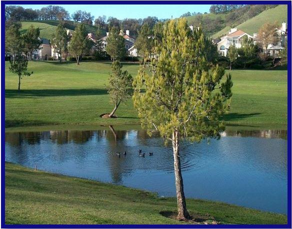 Rancho Solano GC.JPG