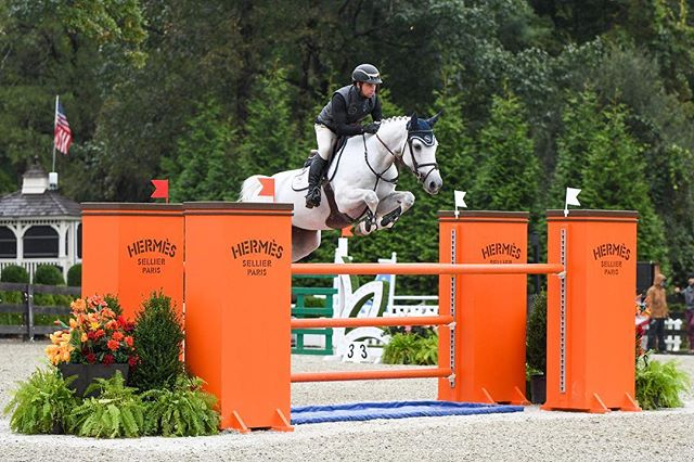 One of my favorite jumps from the American Gold Cup, the orange is so gorgeous against the green trees!