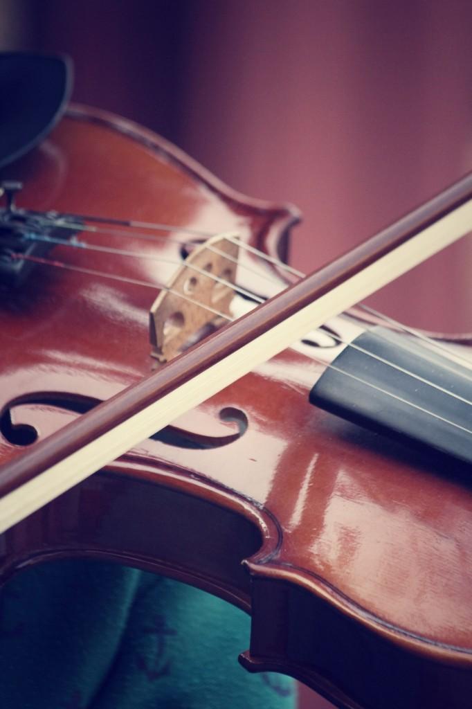 Sammamish Symphony Orchestra Christine Kipp