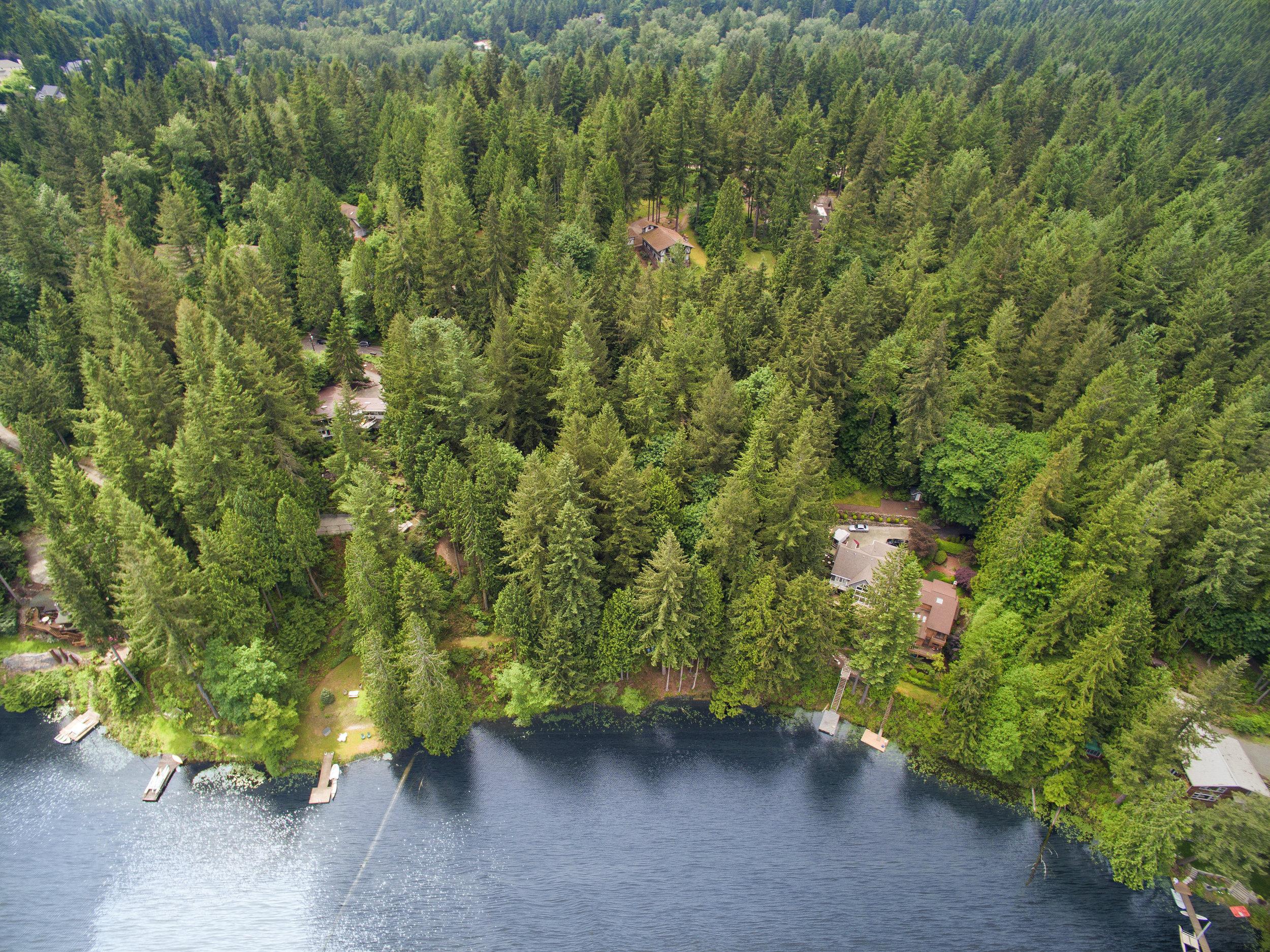 Aerial Ames Lake