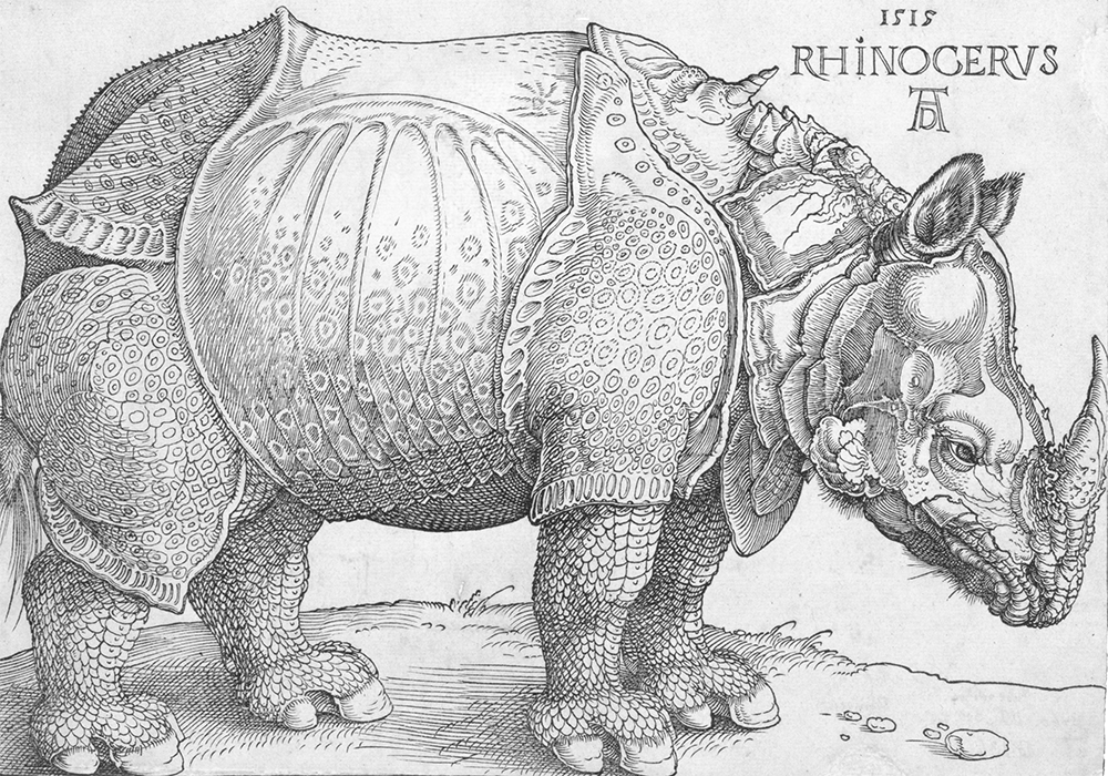 Albrecht Dürer, The Rhinoceros, 1515, Woodcut