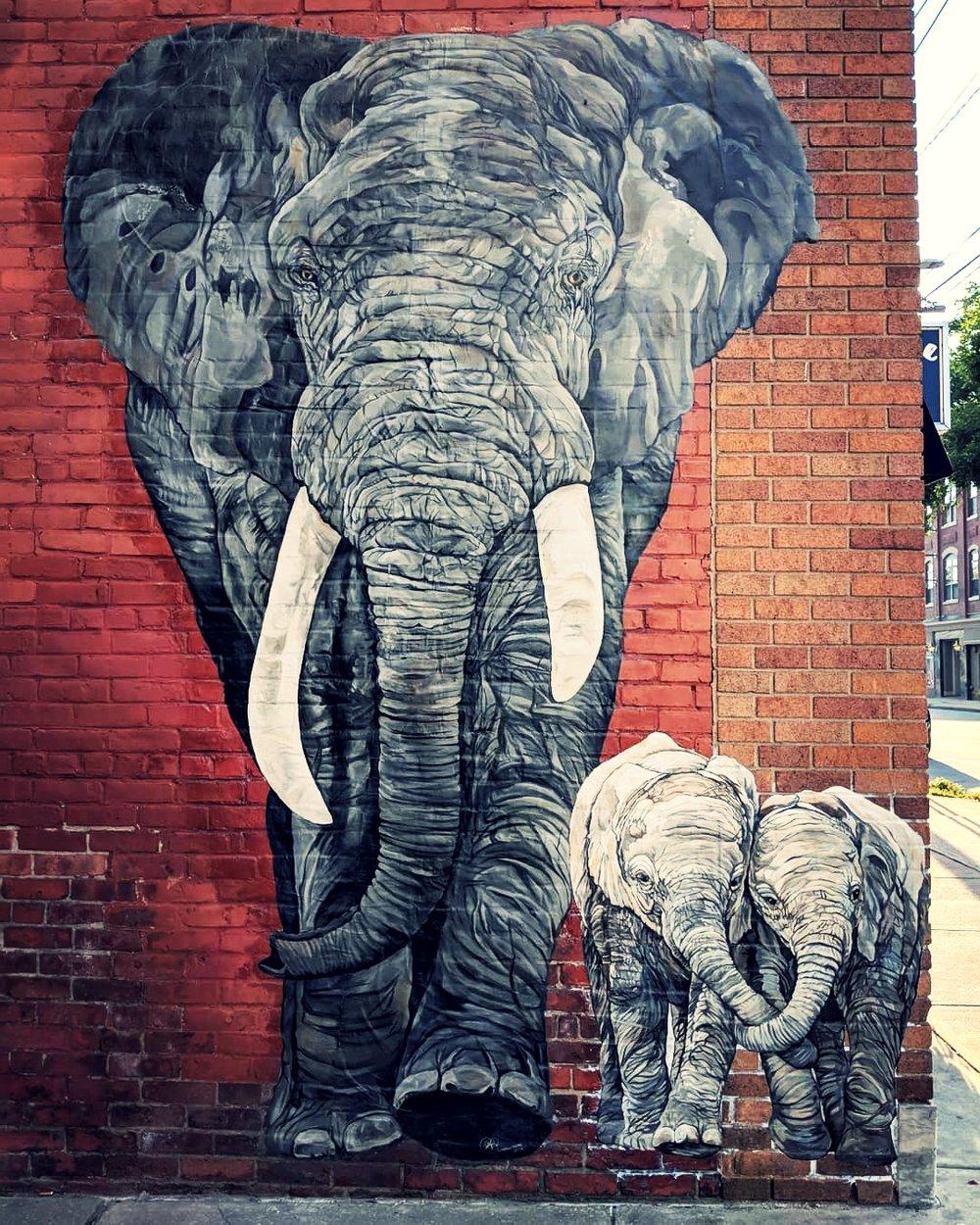 """""""Elephant,"""" Kathryn Palmer-Wiegers, 2016, West Street."""