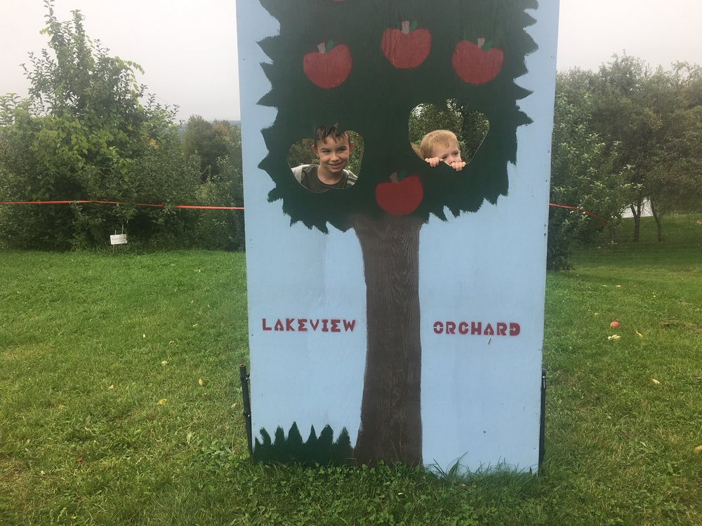 The boys apple picking today