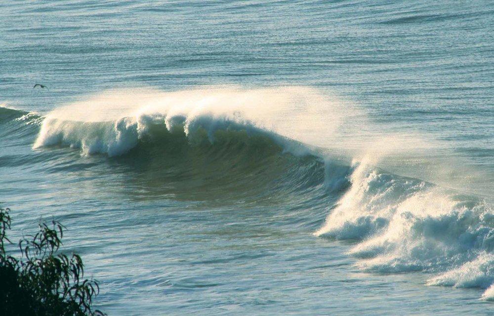 Waves1-21-07.jpg